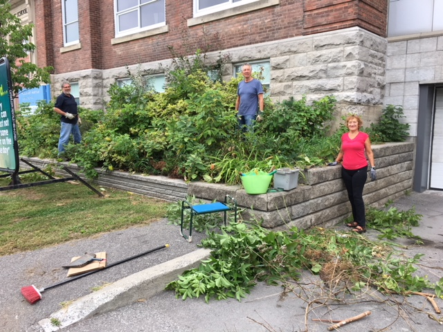 Green Dreamers gardening at Hopewell Public School