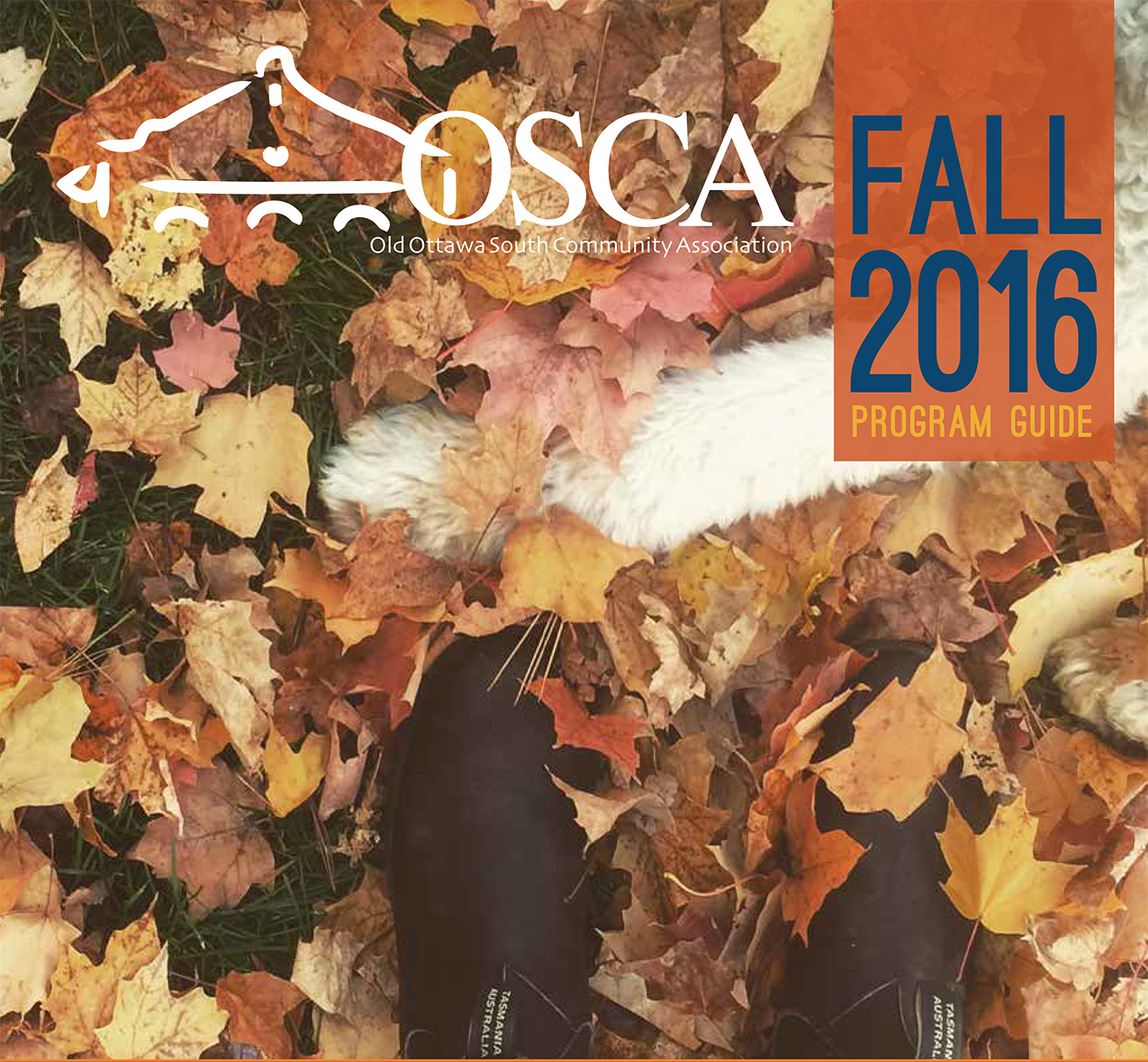 OCSA program guide feature
