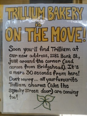 Trillium-is-Moving
