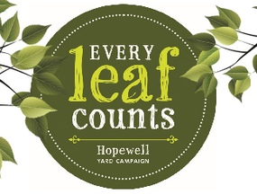 every-leaf-counts