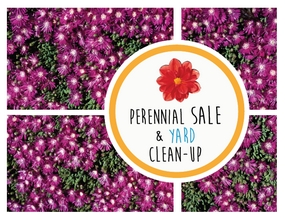 perennial sale and yard clean up
