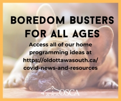 Boredom Busters for All Ages