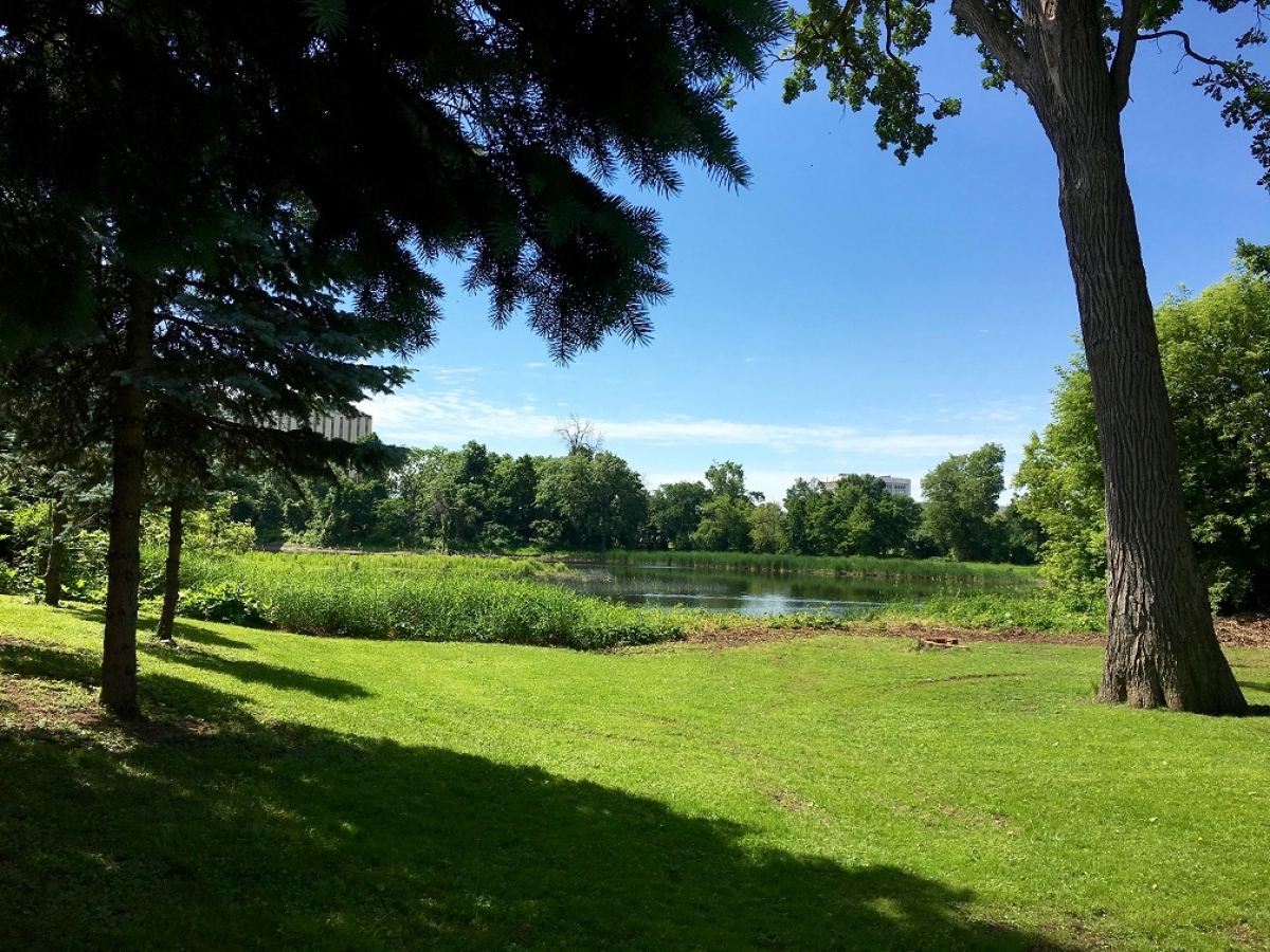 Rideau River view from the May Court Hospice.
