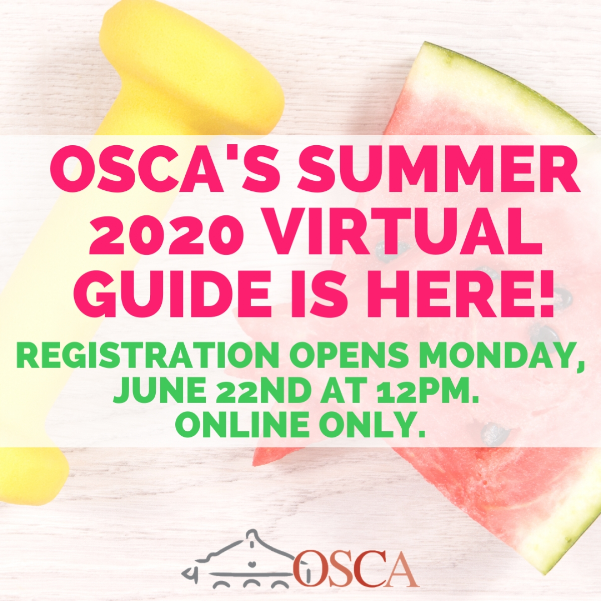 OSCA's 2020 Summer Program Guide Is Now Available