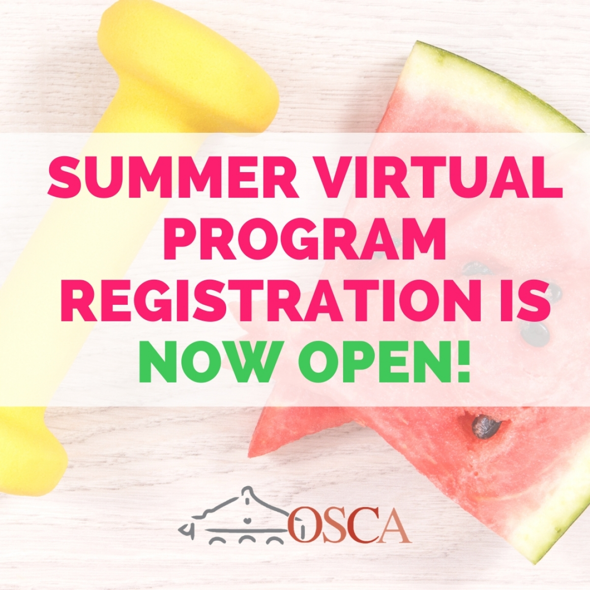Virtual Summer Programs Start week of July 6th -  Registration is Ongoing!