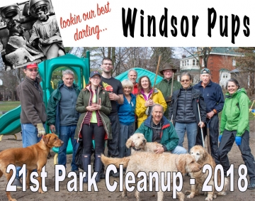 Windsor Park Spring Cleanup