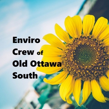 Old Ottawa South Environment Group is Growing!