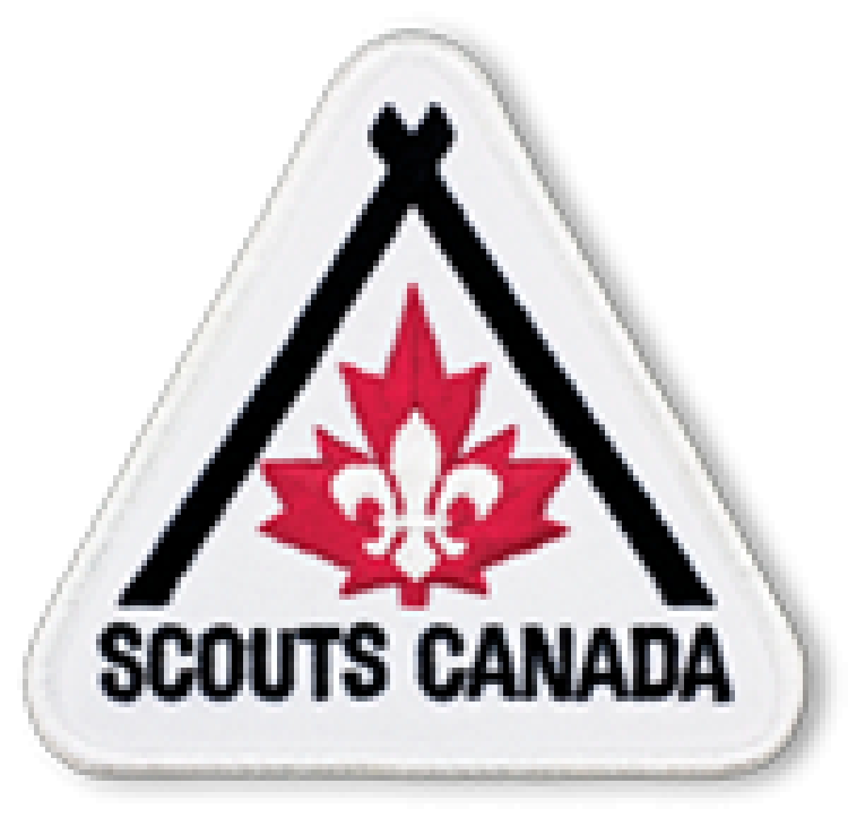 Fundraiser for 17th Southminster Ottawa Scouts Group