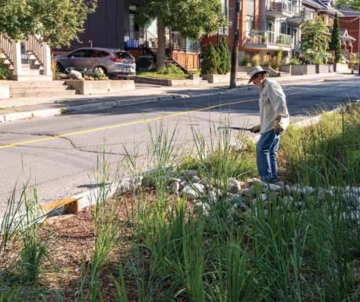 Brian Ure of the Green Dreamers working in the rain gardens.